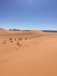 MDS2016 - Des dunes et encore des dunes 2