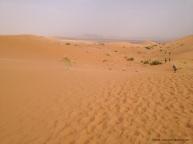 MDS2016 - Etape 1 - Dunes Merzouga 3